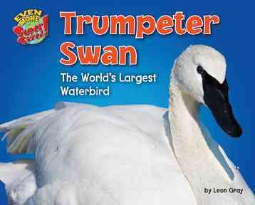Trumpeter Swan By Lunis, Natalie